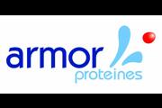 armor-proteines